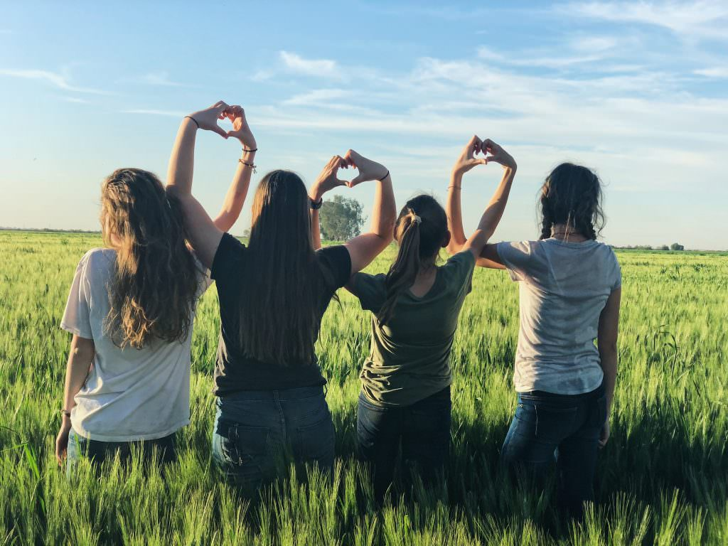 Image shows four young people in a field, with their arms in the air making a heart sign with their hands.